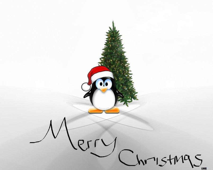 کریسمس همتون مبارک